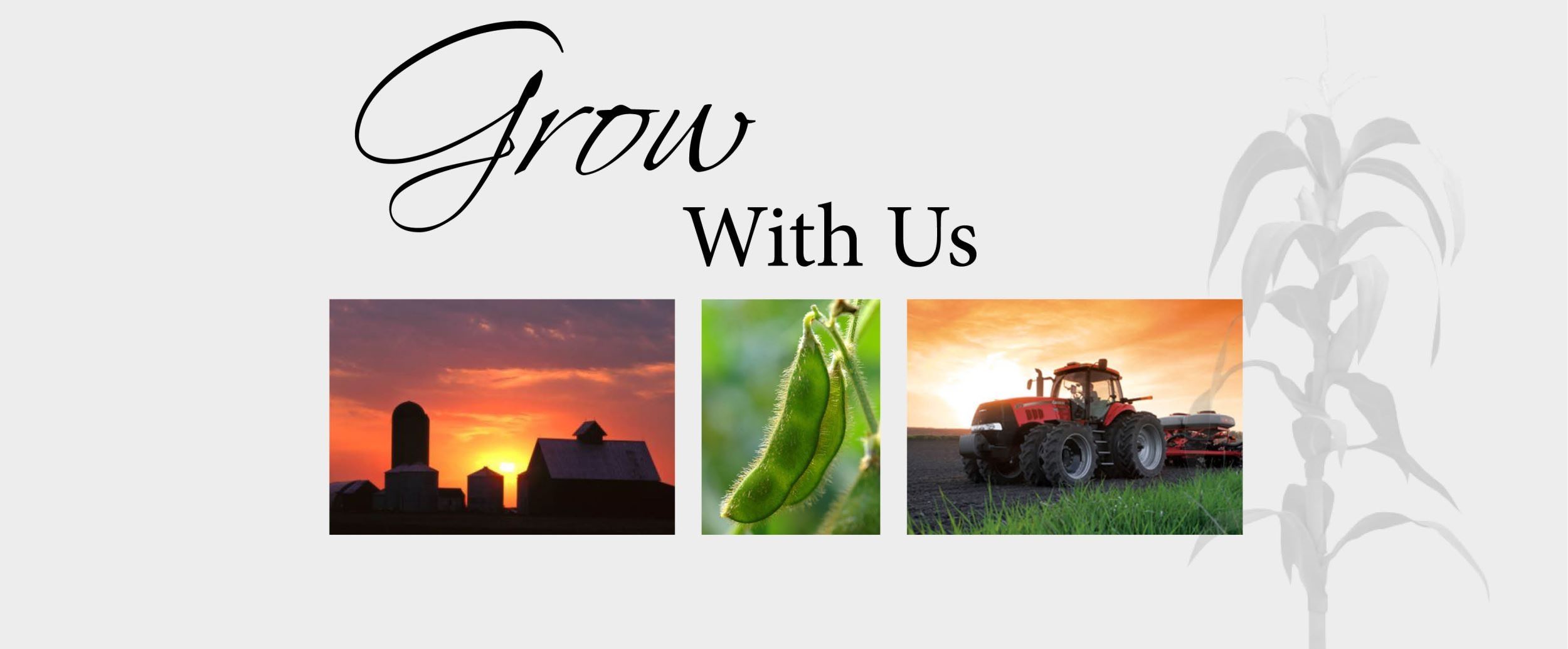 Grow With Us farm scenes